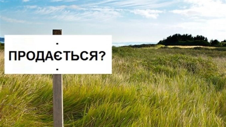 Продаж землі іноземцям: коли буде референдум