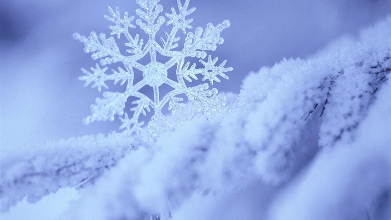Загадкова краса засніженого Луцька (фото)