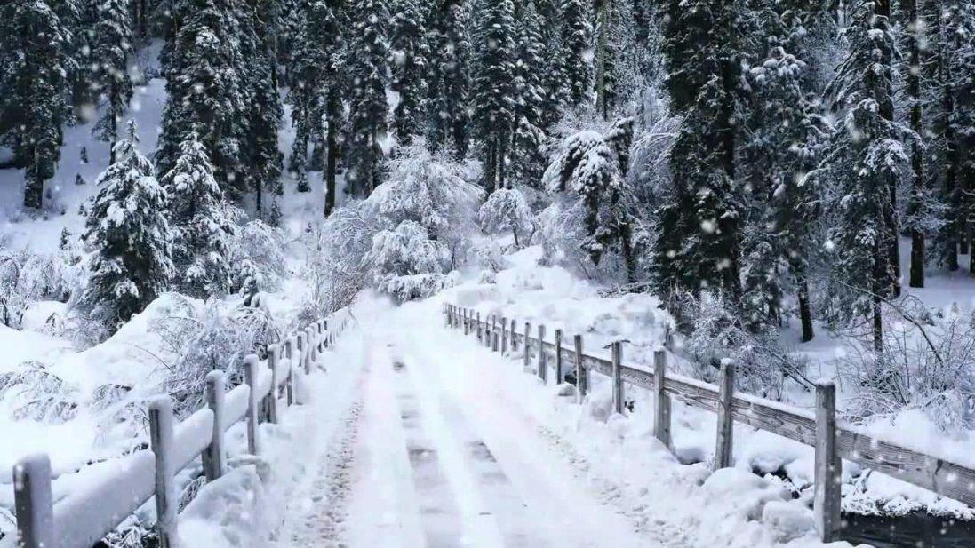 Зима прийшла за календарем: 3 грудня в Україні – сніг і мороз