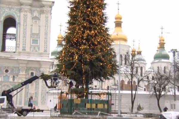 У Києві показали, як збирають ялинку до Нового року