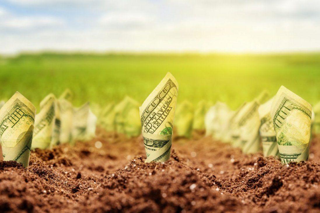 В уряді обіцяють зростання економіки після впровадження ринку землі (відео)