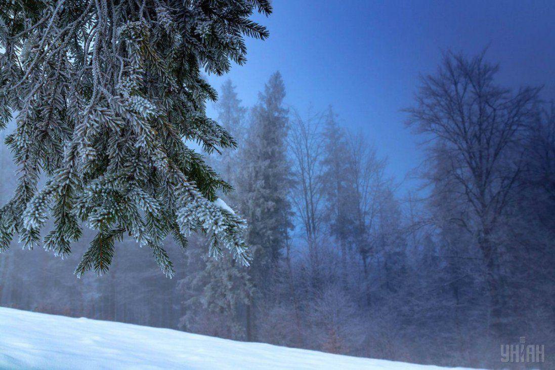 5 грудня: не можна лаятися і вирушати в дорогу
