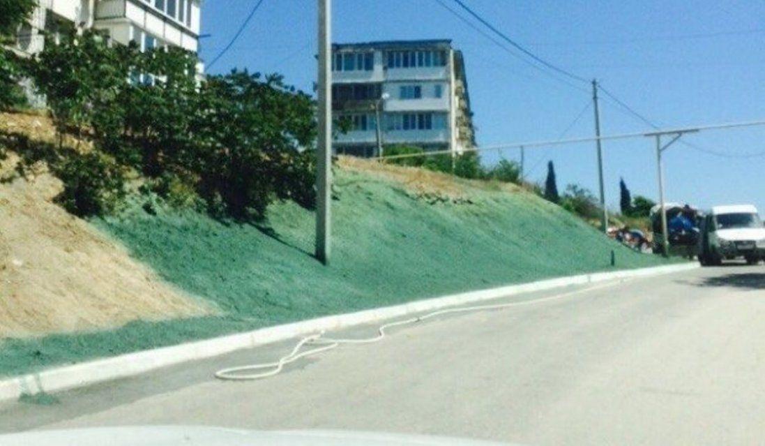 Замість газону: в окупованому Криму помалювали землю в зелений колір (відео)