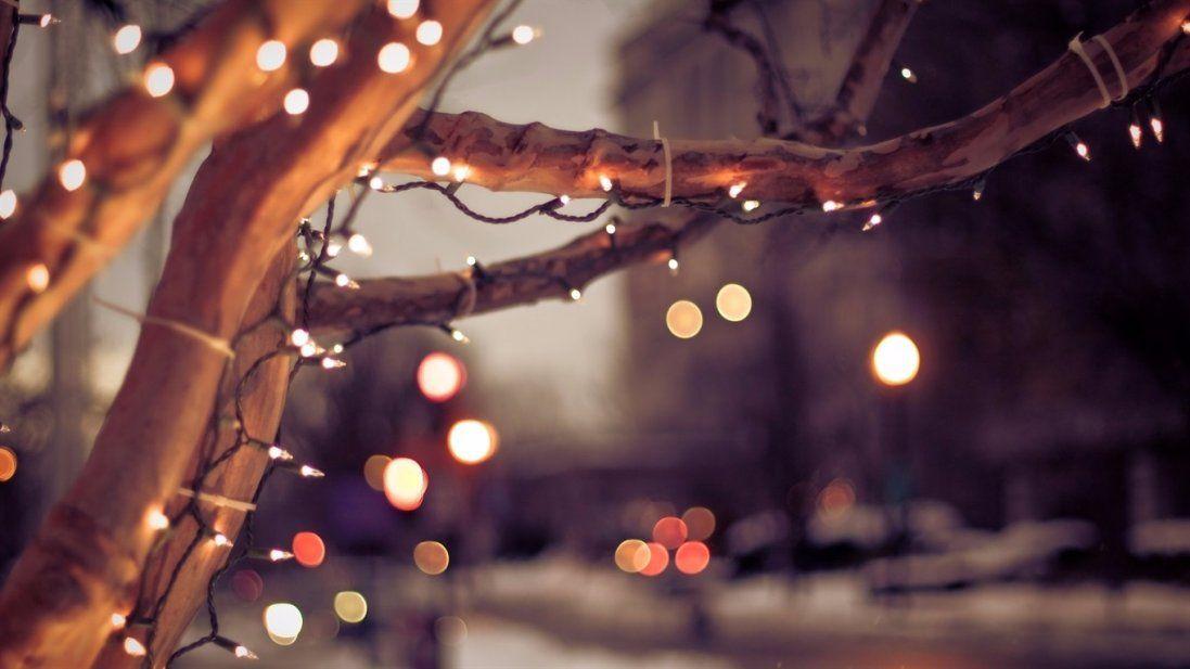 У Луцьку біля міськради встановлюють новорічну ілюмінацію (фото)