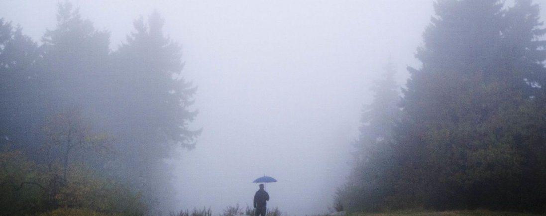 Туманно і тепло: погода в Україні 19 грудня