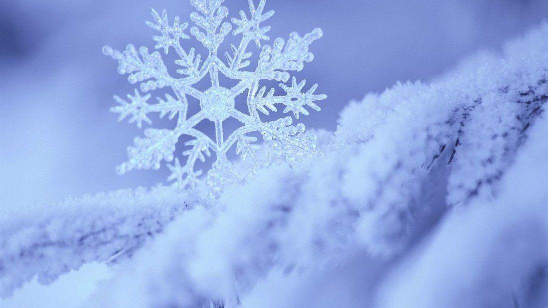 У Київ вантажівками звозять сніг (фото)