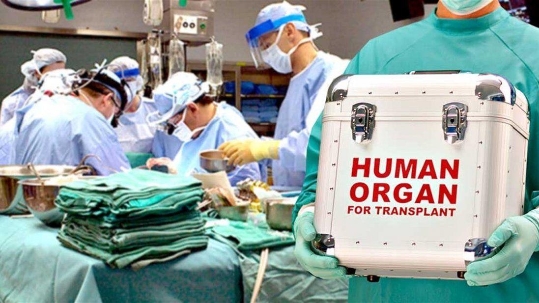 В Україні оприлюднили ціни на пересадку органів
