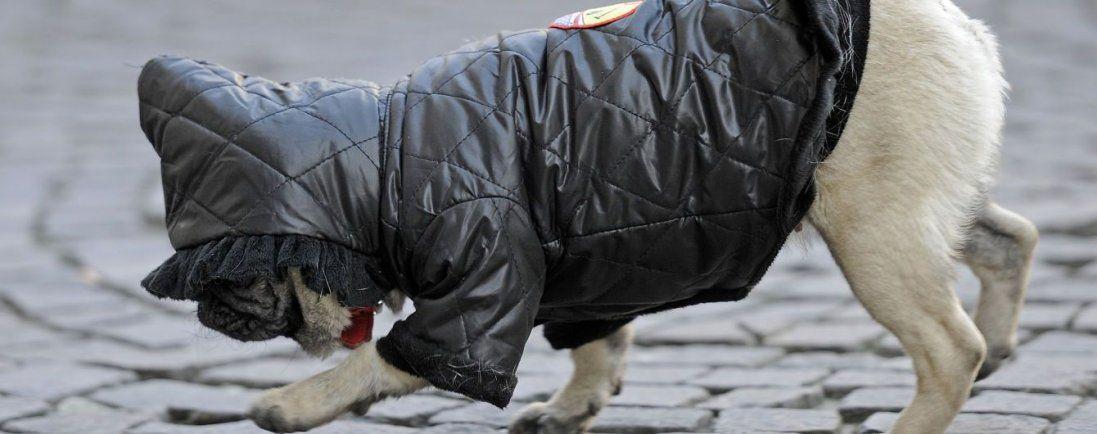 Трохи приморозить: погода в Україні 30 грудня