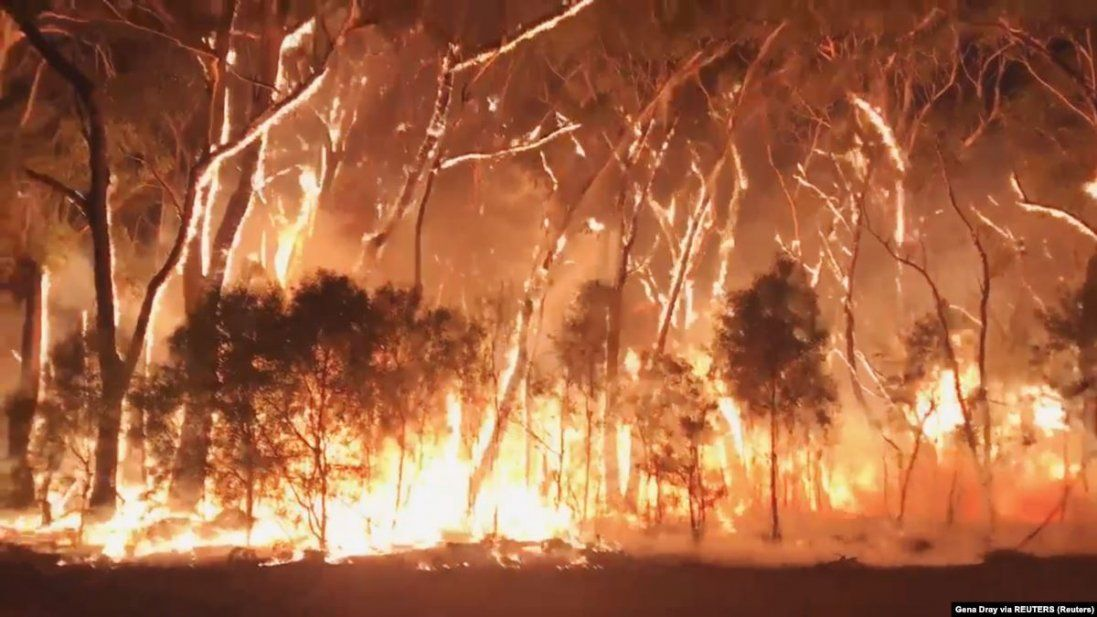 Масштабна пожежа в Австралії: хто винен