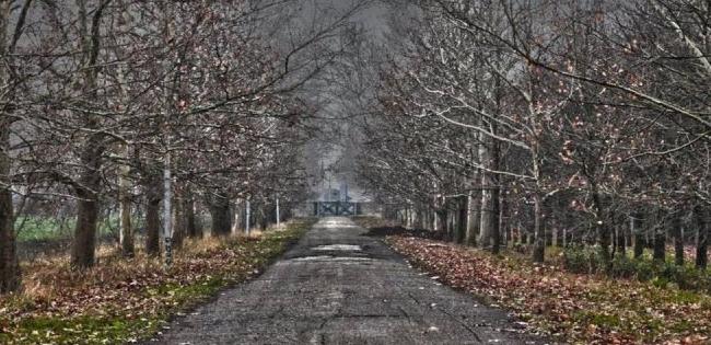 П'ятий місяць осені: як аномальна зима вплине на урожай в Україні
