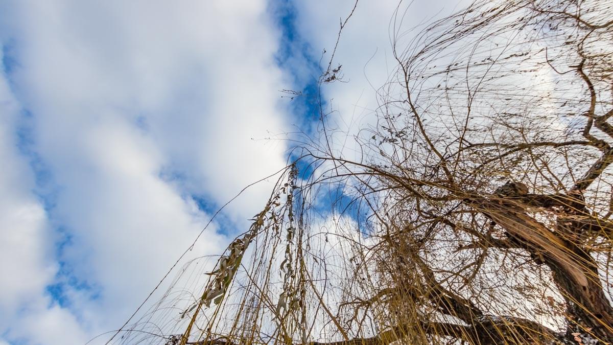 Сьогодні в Україні знову потепліє