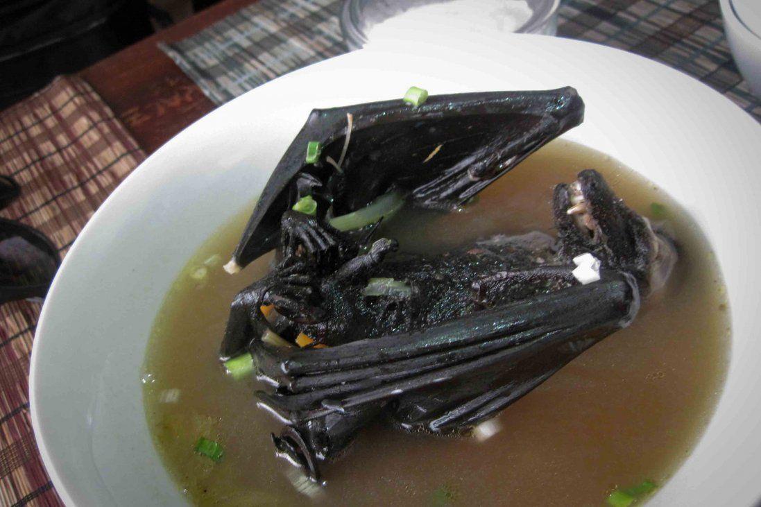 На смертельний коронавірус захворіли, бо їли… суп з кажанів
