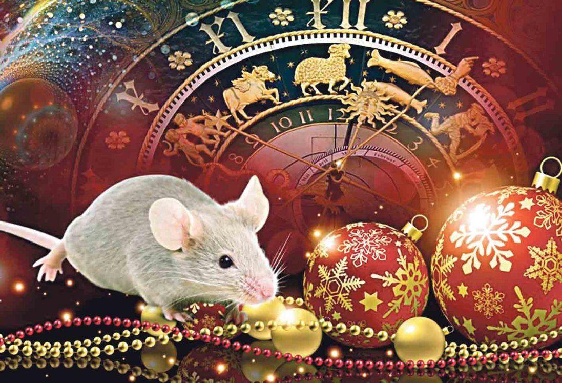 Що принесе нам рік Металевого (Білого) Щура – вражаючий прогноз від відомого астролога