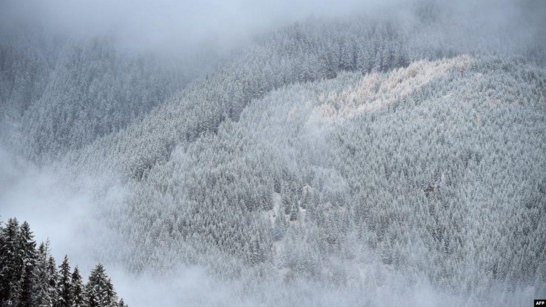 Замело: у Карпатах – понад півметра снігу (фото)