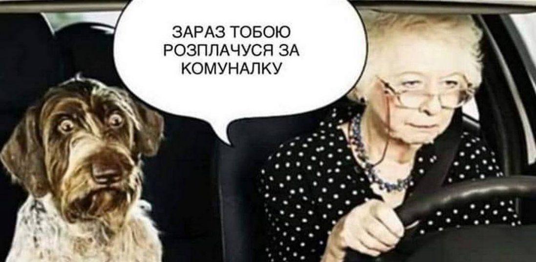 «Продай собаку - заплати комунальні»: реакція соцмереж на скандальну заяву нардепа від «Слуги народу» (+ фотожаби)