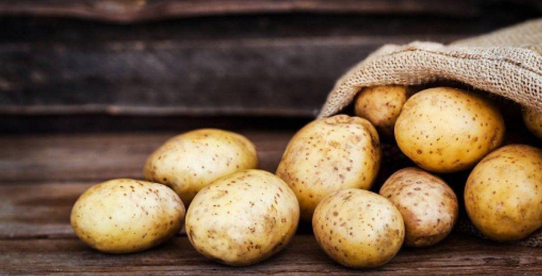Чому в Україні різко подешевшала картопля