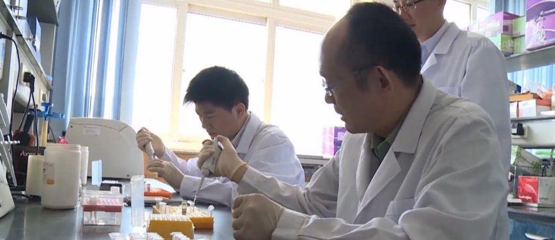 У Таїланді винайшли дієві ліки проти коронавірусу