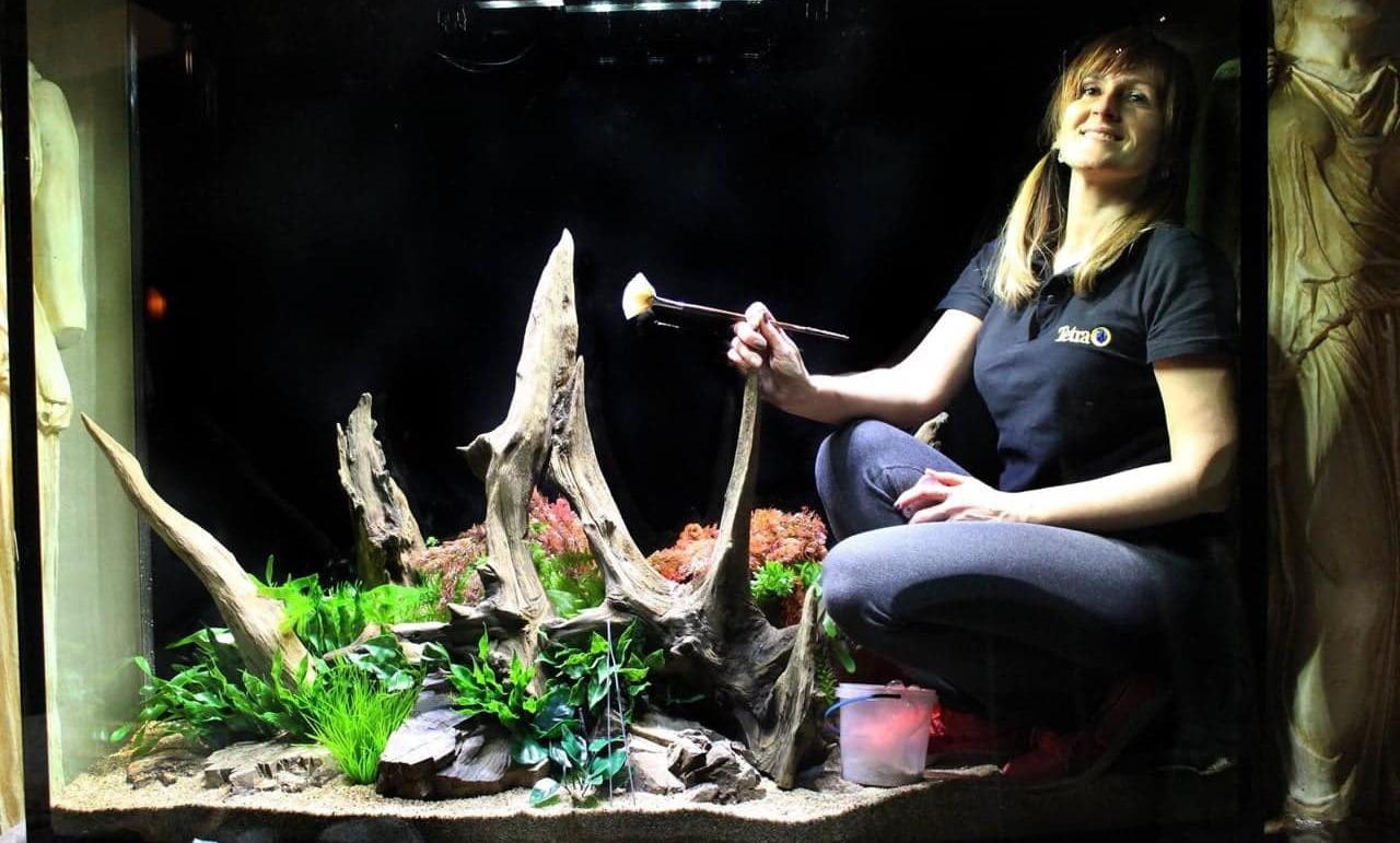 Перетворює акваріуми на кращі в світі шедеври