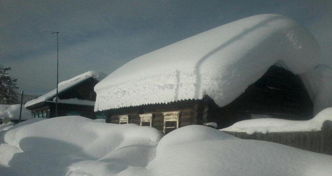 Снігова буря в Україні знеструмила 600 населених пунктів