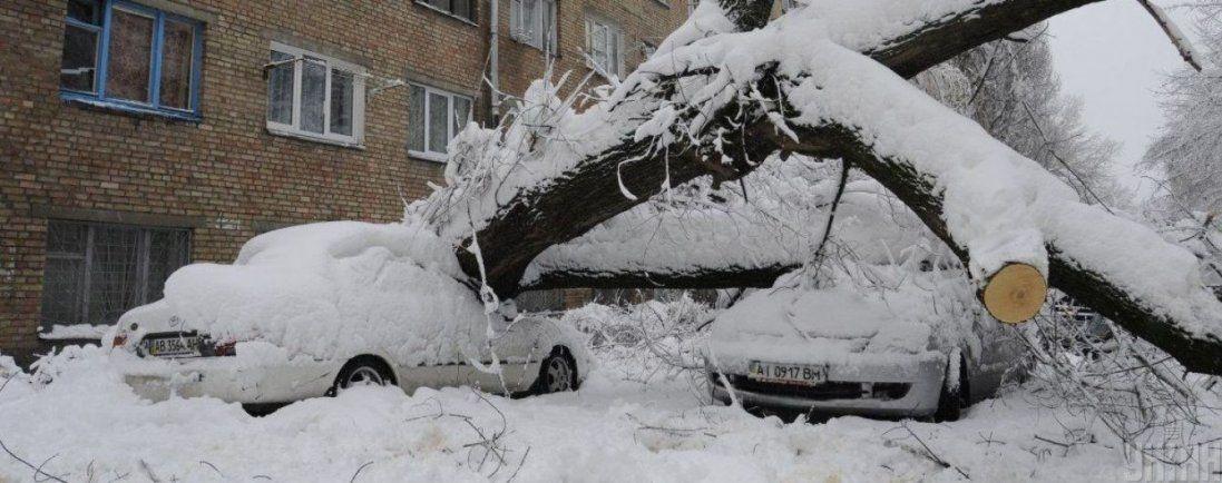 Повалені дерева і знеструмлені населені пункти – Україною пройшлася негода