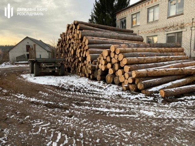 Незаконна деревина, яку виявили під час обшуків