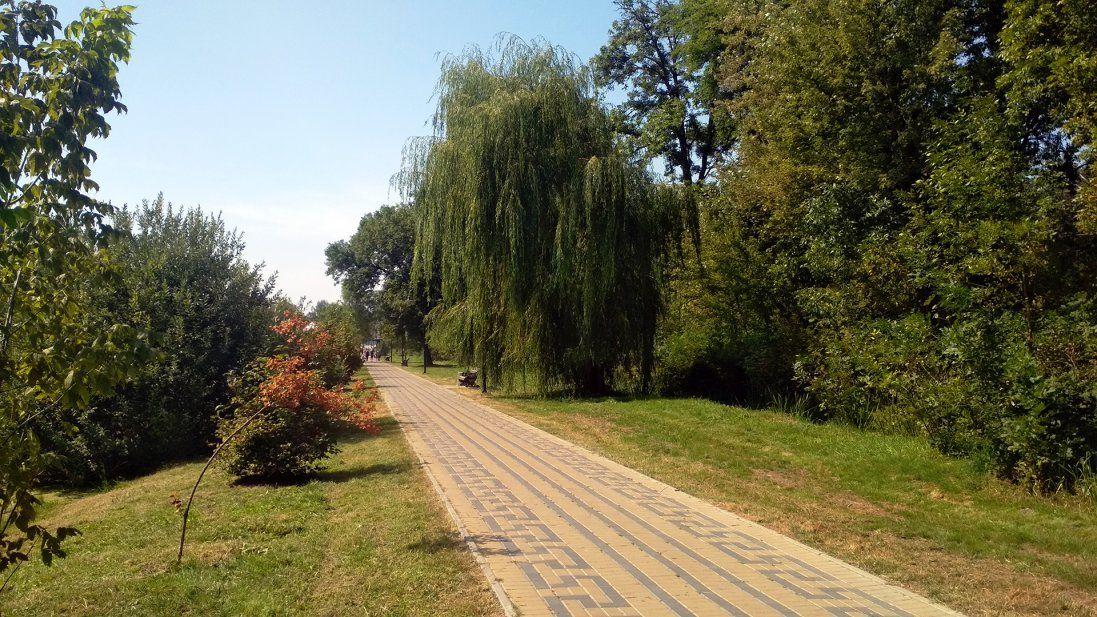 У Луцьку в парку запрацюють камери