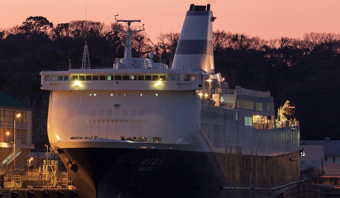 Коронавірус на японському лайнері: назвали дату зняття карантину