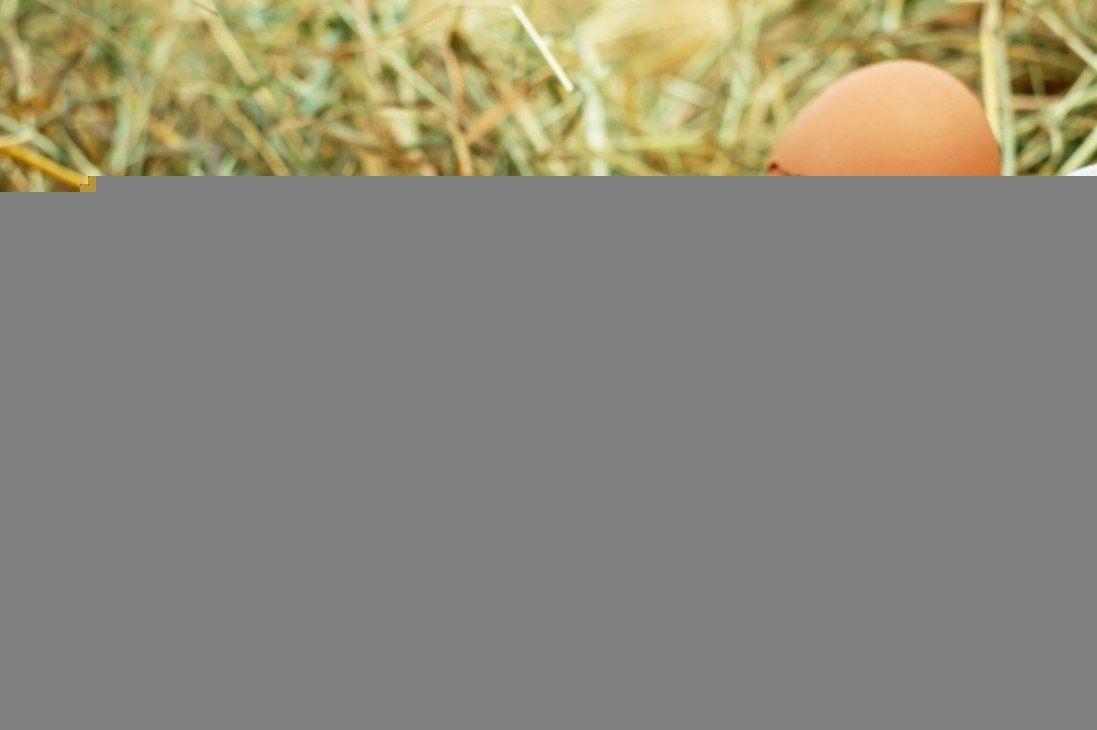 «Ситника – геть»: у Києві аграрії подарували яйця директору НАБУ (відео)