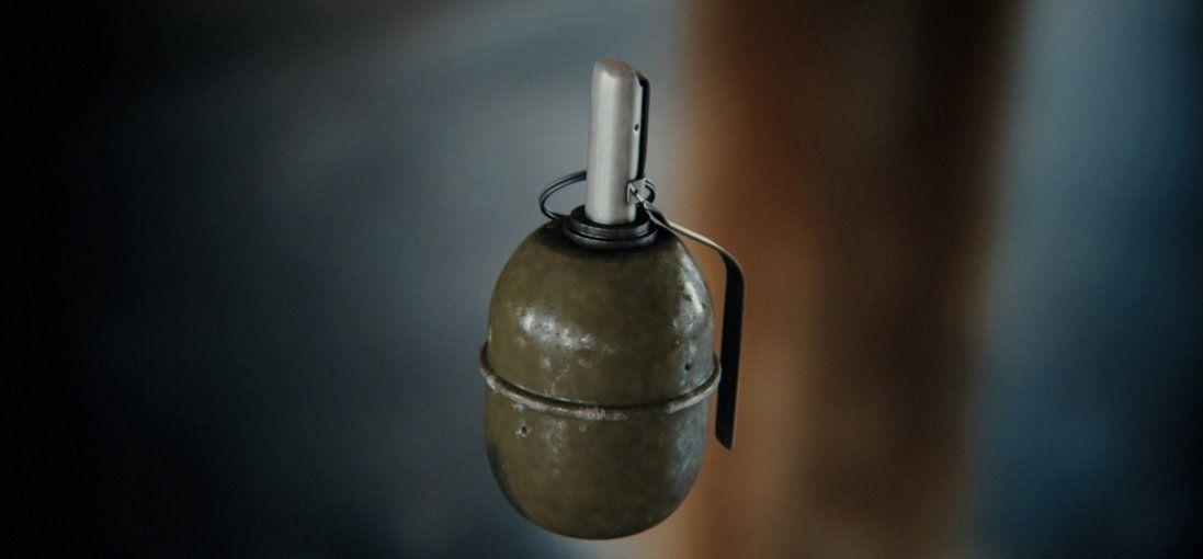 На Київщині у стовбурі дерева знайшли гранату