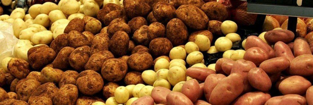 На Волині хлопець вкрав 100 кілограмів картоплі з чужої дачі