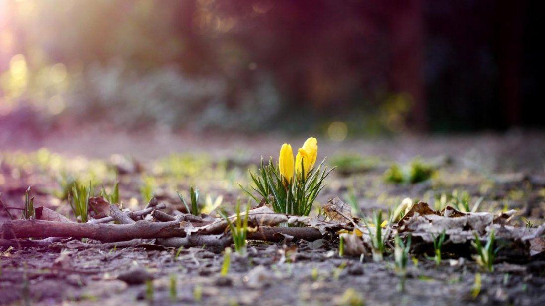 2 березня: іменини, свята, заборони