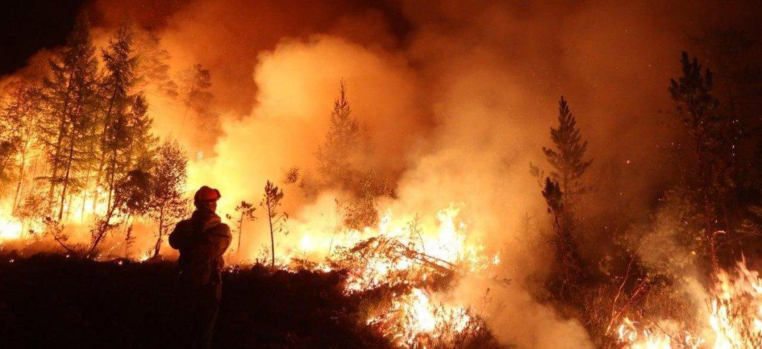 Через обстріли біля Мар'янки сталася масштабна пожежа (відео)