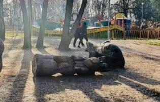 Статуя вбила дівчинку в запорізькому парку: місцеві жителі закликають покарати винних (фото, відео)