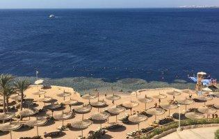 Серед застряглих туристів через коронавірус у Єгипті є волиняни