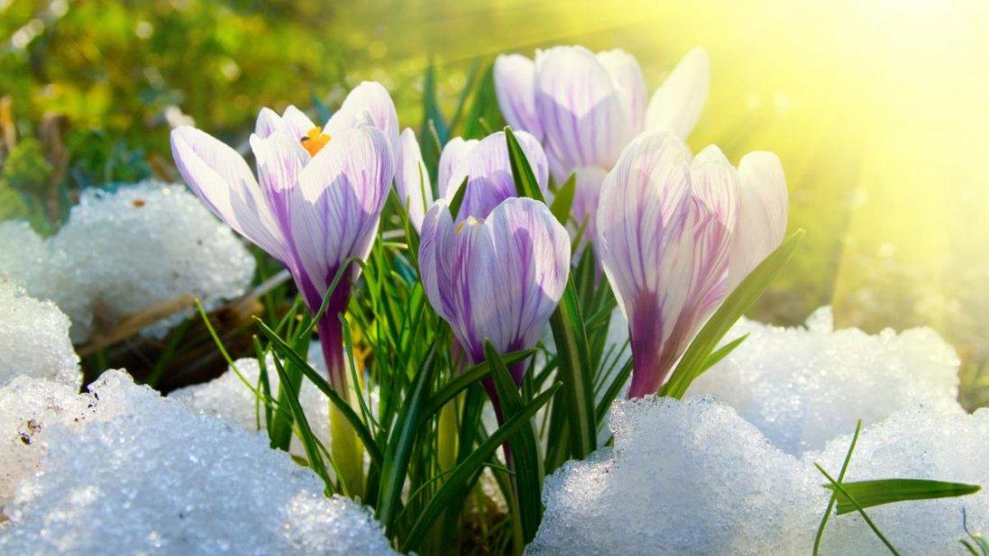 Холодно і вітряно – прогноз погоди в Україні на сьогодні