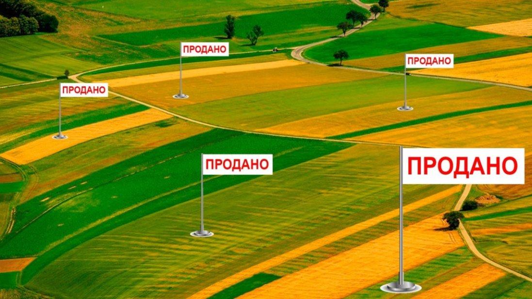 Ринок землі в Україні запустять з новими правилами. Якими?