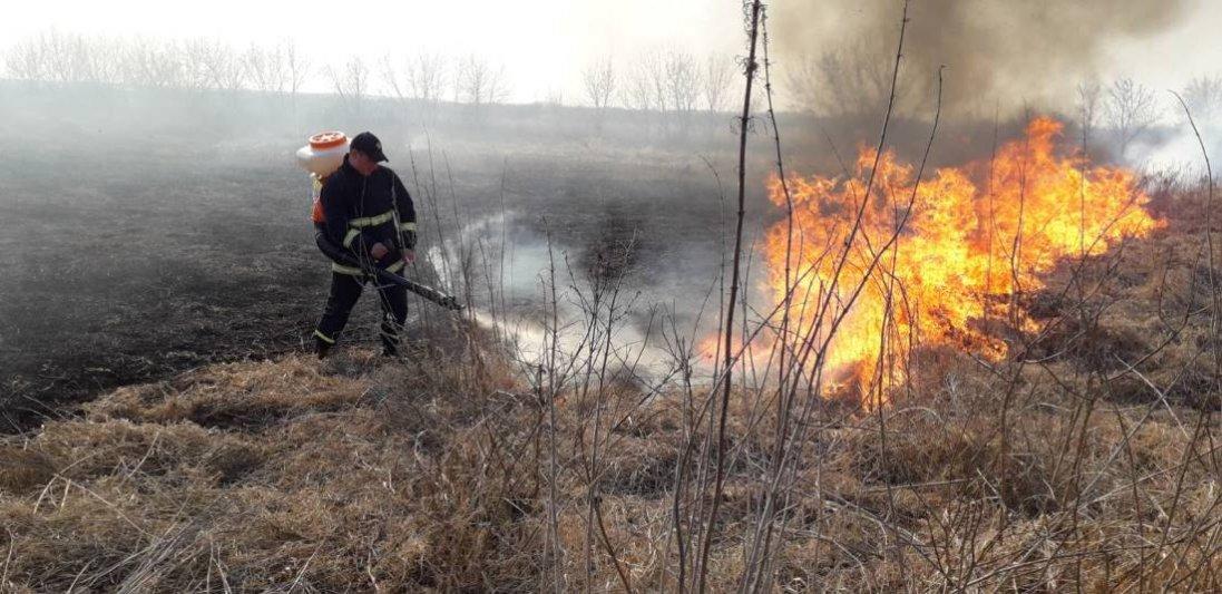 На Волині за добу – 20 пожеж в екосистемах