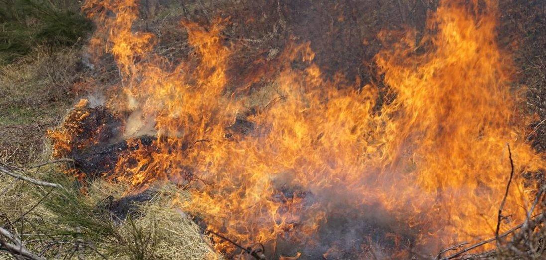 На Волині під час паління сухої трави загинув чоловік