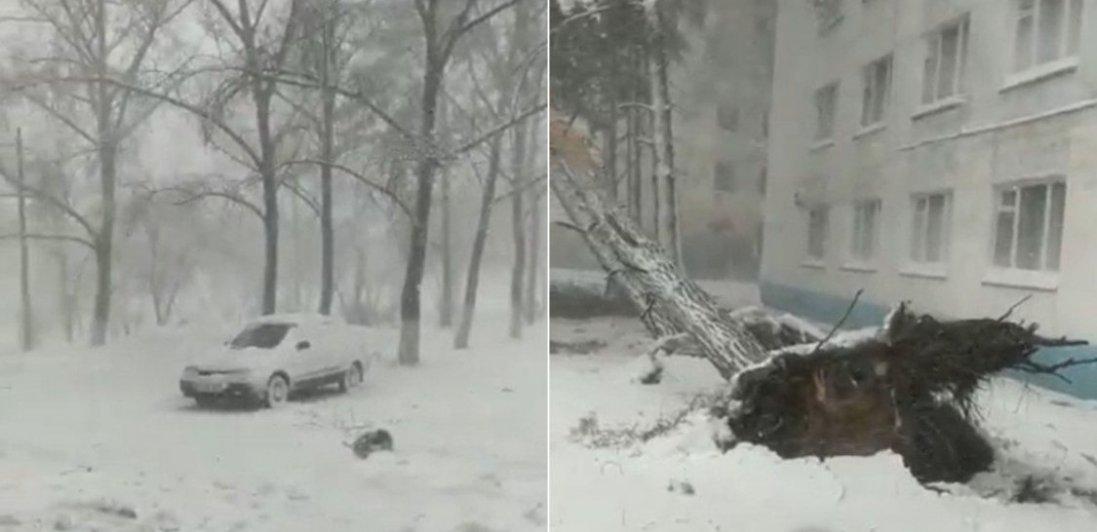 У Казахстані через потужну снігову бурю зірвало дахи та повалило безліч дерев