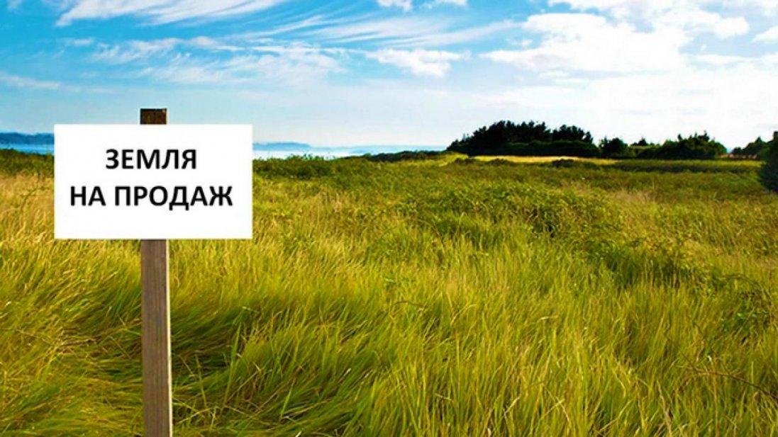 Рада проголосувала за продаж землі: наскільки це небезпечно