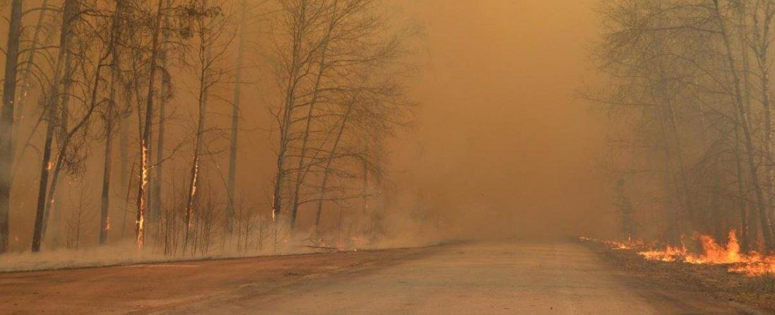 У Чорнобилі загасили одне з великих вогнищ загоряння