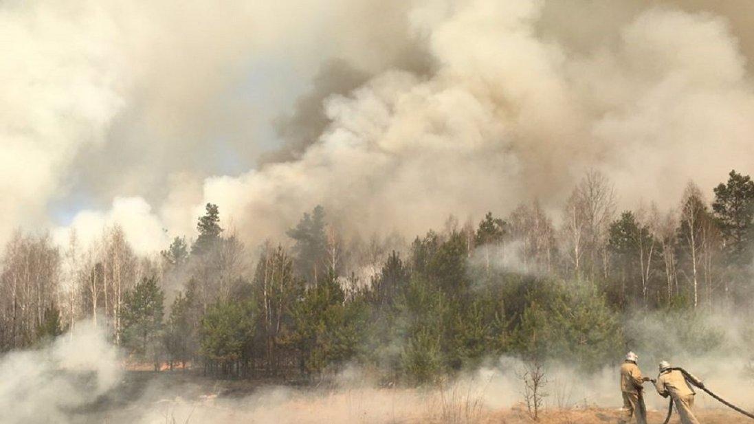 Пожежа у Чорнобильській зоні: де тліють пеньки і торф'яники