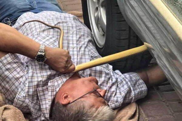 Під Дніпром чоловік загинув під колесами власного авто
