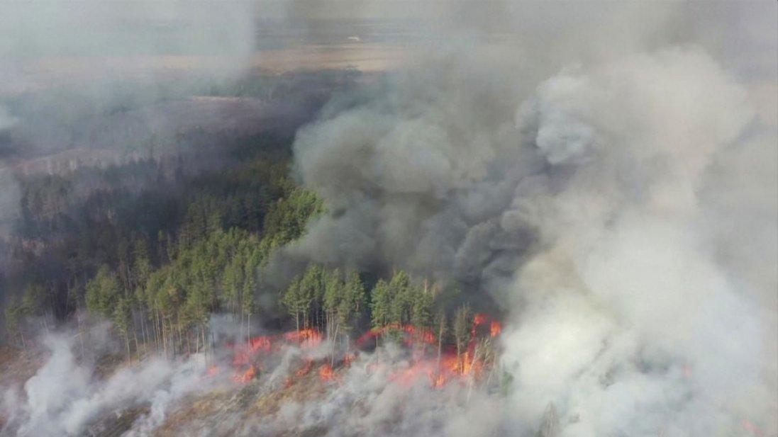 Підпали в Чорнобильській зоні: Нацгвардія проводить антидиверсійну операцію