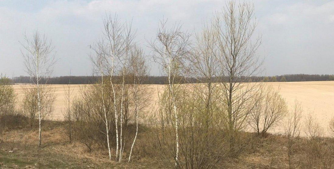 Фото нової пустелі в Україні. Чому і де вона виникла?