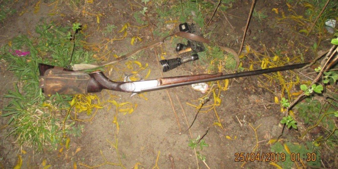 На Волині під час незаконного полювання  браконьєри вбили козулю