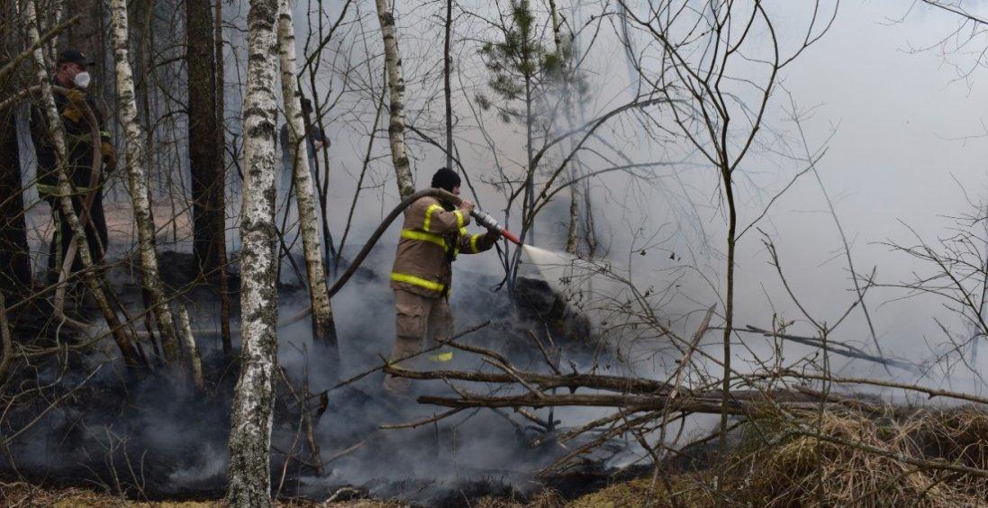 На Житомирщині нова пожежа охопила 200 гектарів лісу
