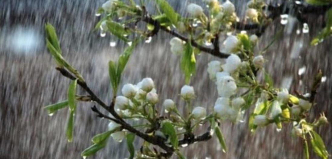 Завтра Україну накриють дощі з грозами