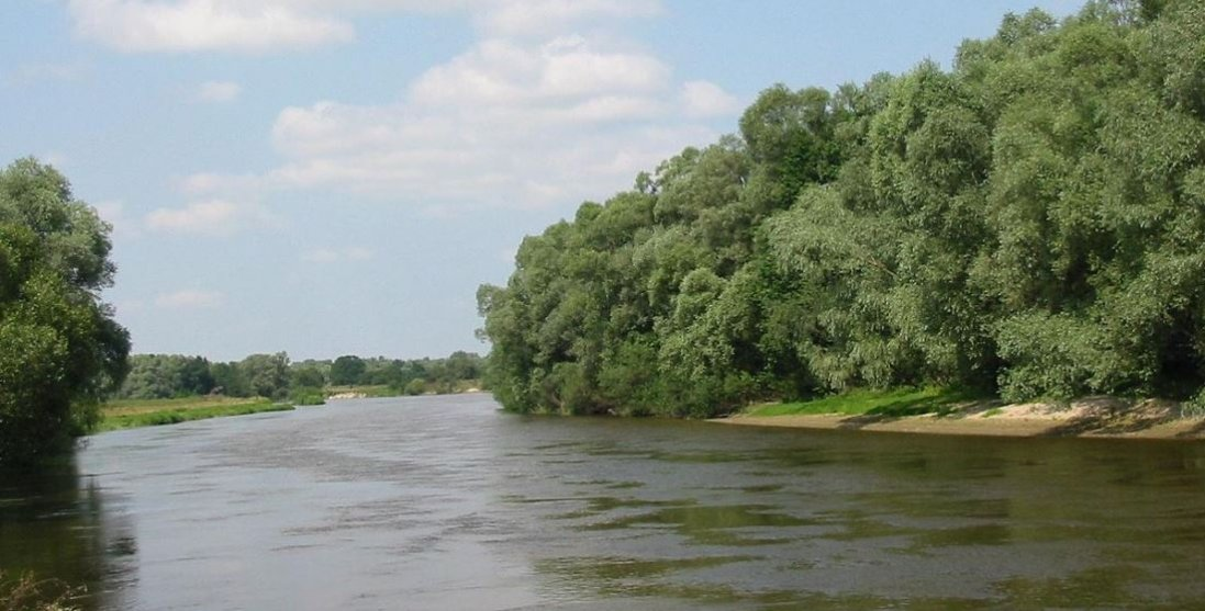 Волинянин за 1500 доларів змушував іноземців перепливати у Польщу