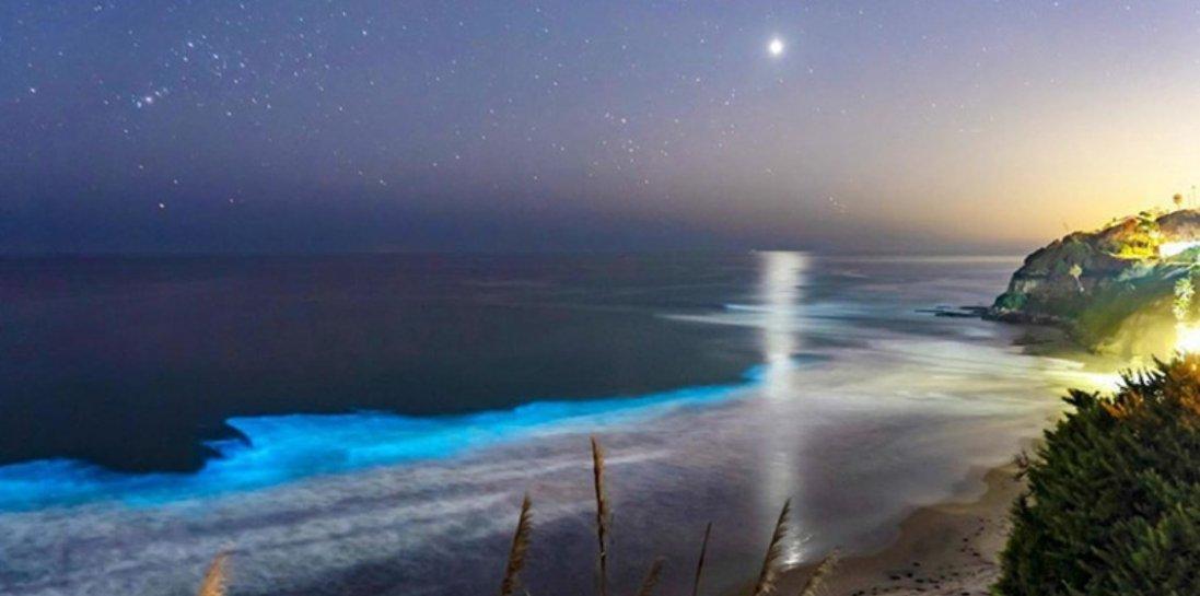 В США пісок та хвилі почали випромінювати блакитне неонове сяйво